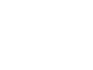 Native Instruments Logo White Taller