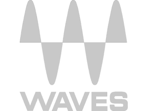 Waves Logo Transp Grey2